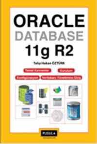 Oracle Database 11g R2
