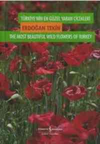 Türkiyenin Yaban Çiçekleri Kutulu