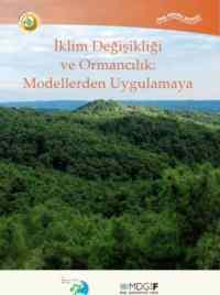İklim Değişikliği ve Ormancılık: Modellerden Uygulamaya