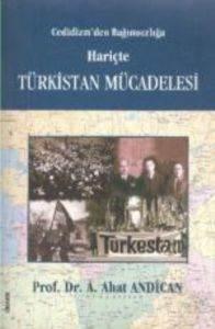 Türkistan Mücadelesi