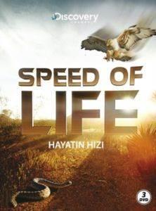 Hayatın Hızı (3 DVD)