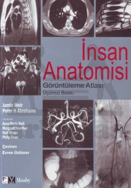 İnsan Anatomisi Gö ...