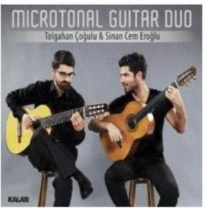 Microtonal Guitar  ...