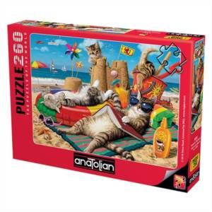Kedilerin Plaj Keyfi / Cats On The Beach