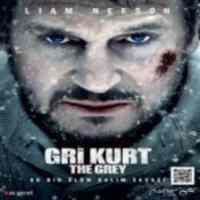 Gri Kurt (VCD)