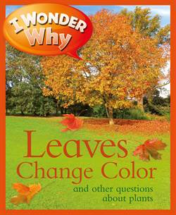 I Wonder Why The Leaves Change Color