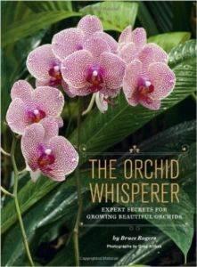 The Orchid Whisperer: Expert S ...