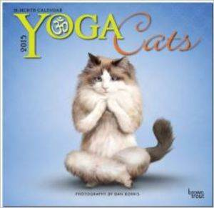 Cal 15 Yoga Cats 18 Month