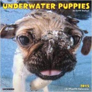 Cal 15 Underwater  ...