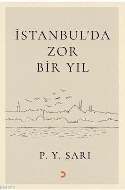 İstanbul'da Zor Bir Yıl