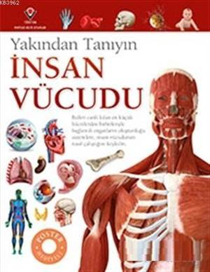 İnsan Vücudu - Yak ...