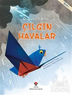 Çılgın Havalar - Origamiyle Bilim