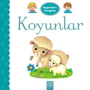 Koyunlar - Hayvanl ...