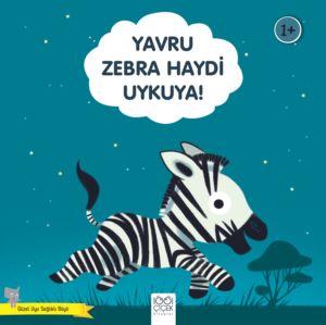 Yavru Zebra Haydi  ...