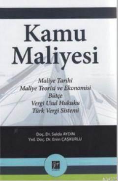 Kamu Maliyesi; Maliye Tarihi, Maleyi Teorisi Ve Ekonomisi, Bütçe, Vergi Usul Hukuku, Türk Vergi Sistemi
