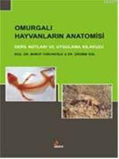 Omurgalı Hayvanların Anatomisi; Ders Notları Ve Uygulama Kılavuzu