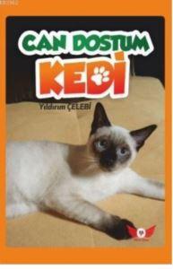 Can Dostum Kedi