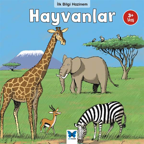 İlk Bilgi Hazinem Hayvanlar