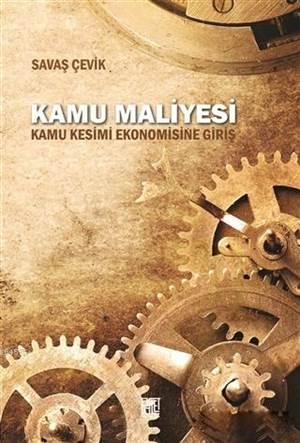 Kamu Maliyesi; Kamu Kesimi Ekonomisine Giriş