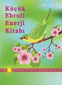 Küçük Ebruli Enerj ...