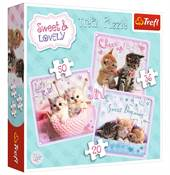 Sweet Kittens / Tr ...