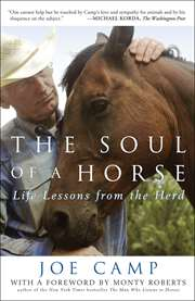 The Soul of a Hors ...