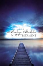 NIV Holy Bible New ...