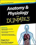 Anatomy And Physio ...