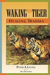 Waking the Tiger:  ...